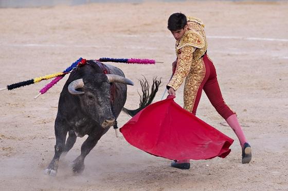 Spain1_560x373
